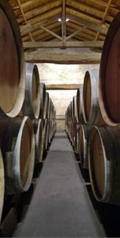 Barils pour la maturation - Barrels for ripening - 桶成熟