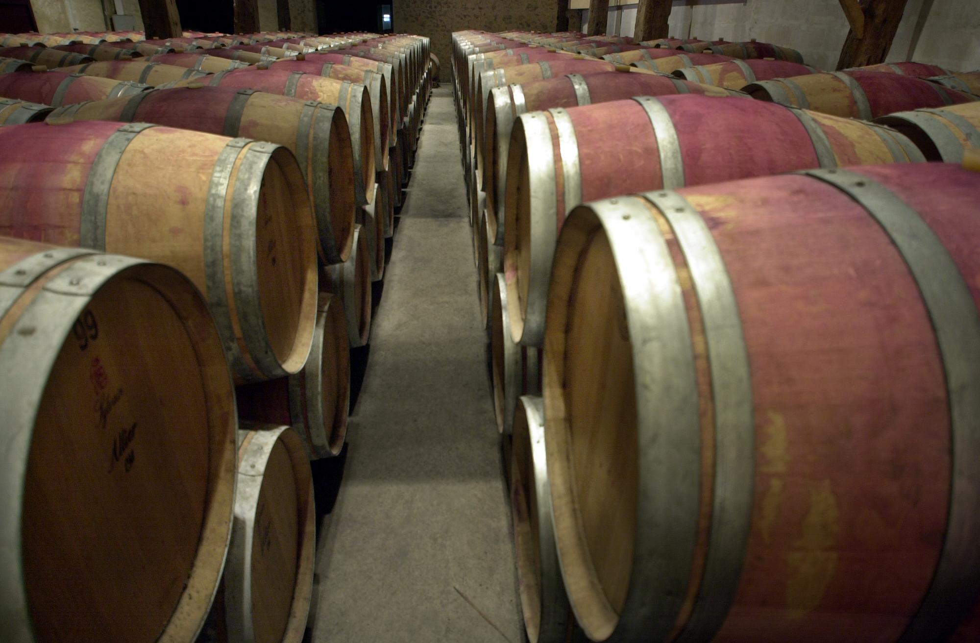 La vinification et tous ses secrets