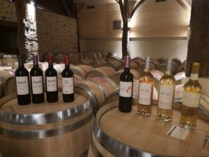 Produits bio: les vins